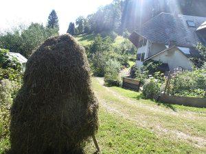 Beim Heu-Öhmd im August gab es wieder Land-Art am Kunzenhof