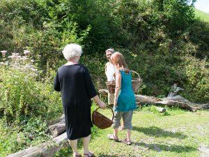 Kräuter sammeln auf der Wiese im Wildkräuterkurs
