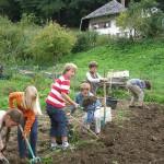 Kinder auf Feld
