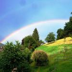Regenbogen ueber der Tierweide