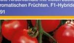 Saatgut – ein Teil der Ernte?