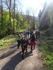Die Jupro-Kinder wandern in den Wald ...