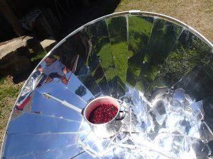 Sommersonnen-Johannisbeermarmelade