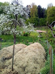 Der neue Komposthaufen, land-art!