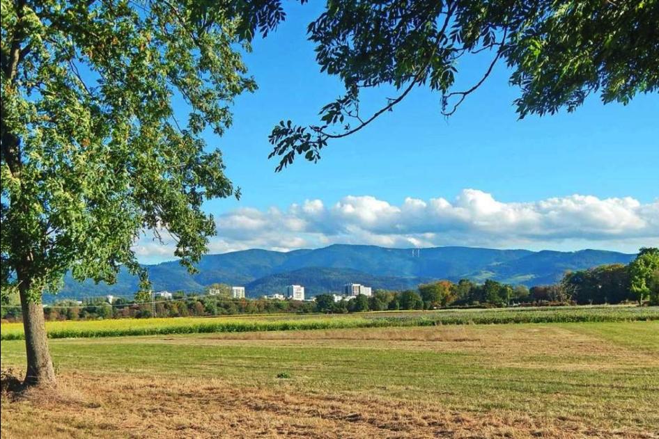 Soll das Dietenbachgebiet unbebaut bleiben?
