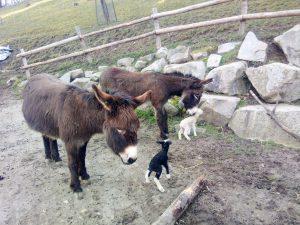 Sehr zärtlich werden sie von Tante Rosalie und Leila begrüßt