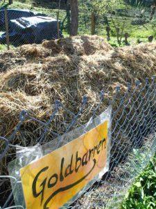 Gut geschützt machen Millionen von kleinen Helfern daraus den kostbaren Humus für Garten, Wiesen und Weiden